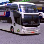 COMIL INVICTUS CATARINENSE - Skins World Bus
